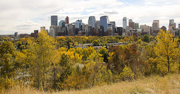 Struggling Still: An autumn view of the Calgary community of Sunnyside. (Photo by Cara Howlett/The Press)