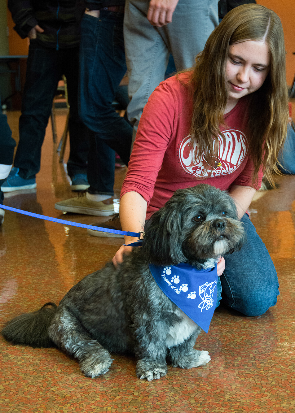 Pet a Puppy: SAIT students got to spend some quality time with a group of puppies at the Pet a Puppy event held in the Campus Centre at SAIT. The event featured lots of furry-faced friends who were on hand for students and staff to pet as a means of relieving stress.