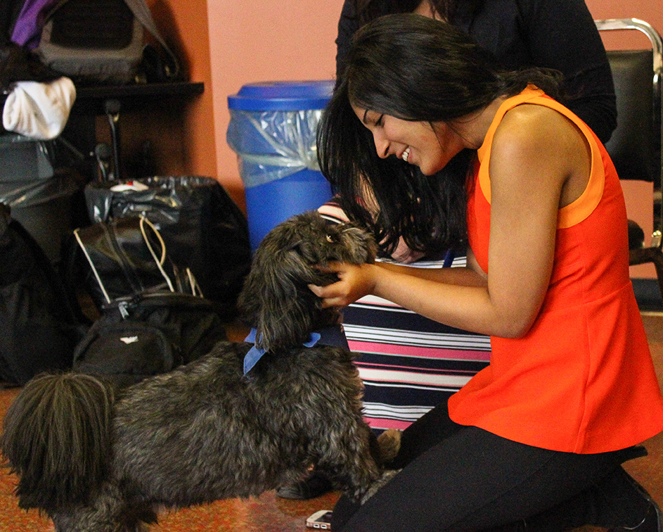 Pet a Puppy: Yashica Anandani cuddles with a puppy at the Pet a Puppy event held in the Campus Centre at SAIT. The event featured lots of furry-faced friends who were on hand for students and staff to pet as a means of relieving stress. (Photo by Abhishek Anand/The Press)