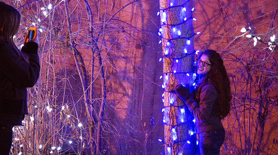 Christmas Lights A young couple enjoys the half-million coloured lights on display at the Zoolights event at the Calgary Zoo Friday, Nov. 29, 2013. The Zoo just reopened after a prolonged partial closure due to the June, 2013 flooding. The display runs from Nov. 29 to Jan. 4. (Photo by Sarah Collins/The Press)