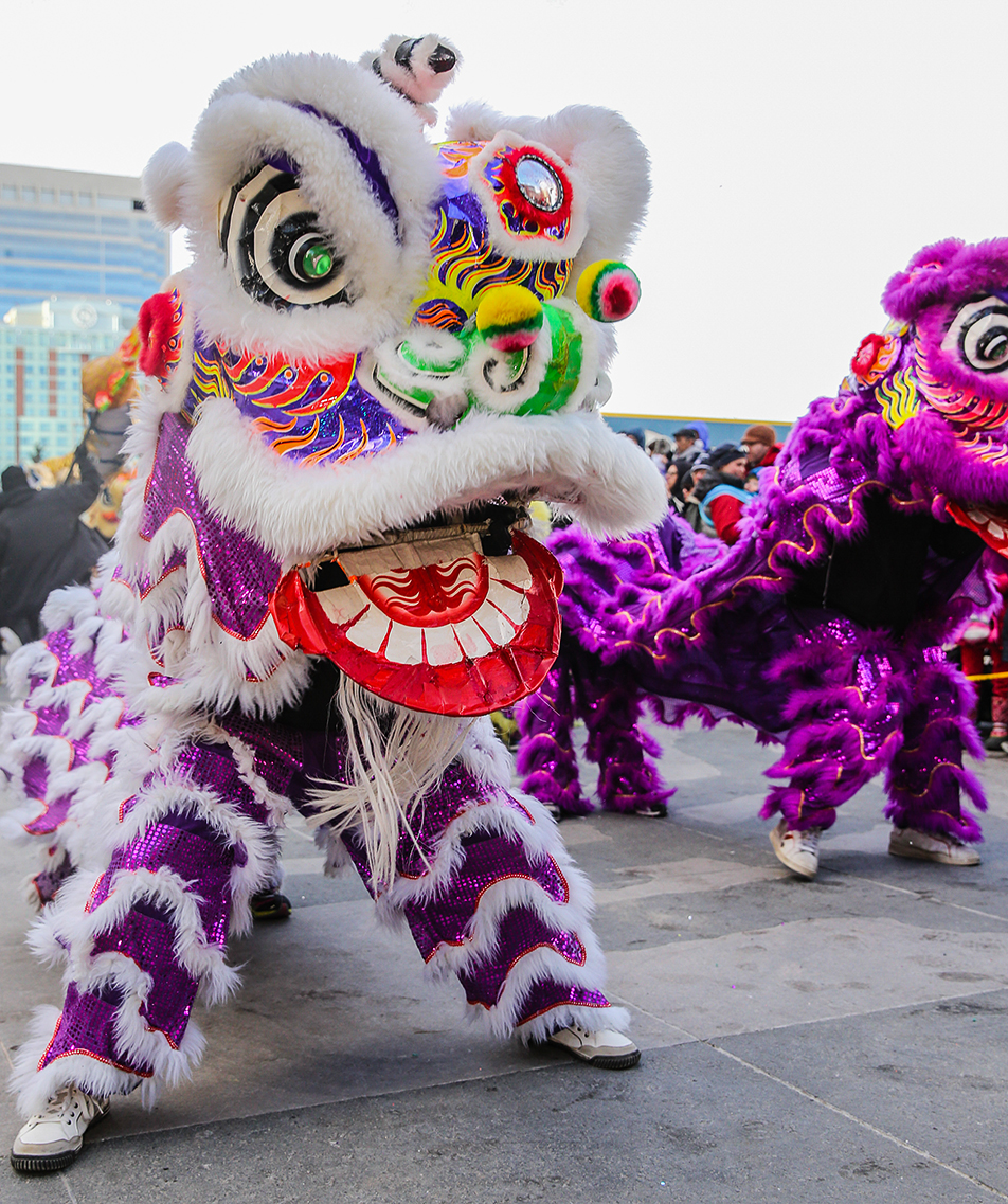 Colourful Dance: Lions dance as part of a traditional dance in celebration of Chinese New Year. (Photo by Brent Calver/The Press)