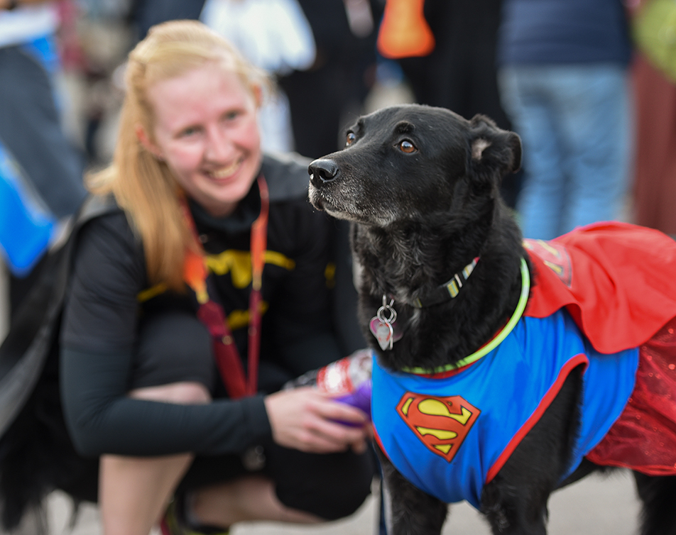 Super Dog: Midnight the dog and her owner Claire Davis catch a breather after completing the Dash of Doom running race. Davis and her dog won first prize in the costume contest that was a part of the event. (Photo by Kenneth Appleby/The Press)