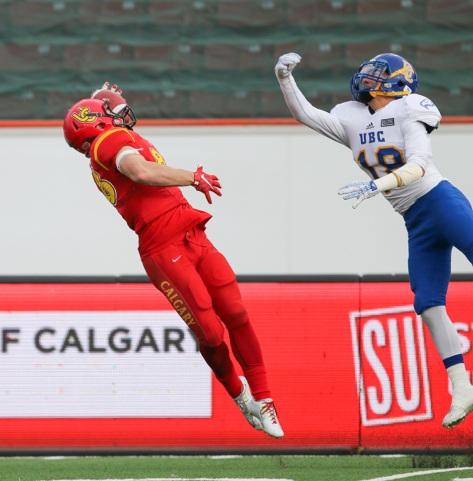 One Handed U of C Dinos Austen Hartley, receiver, makes a one-handed grab during the Hardy Cup between the University of Calgary Dinos and the University of British Columbia Thunderbirds at McMahon Stadium on Saturday, Nov. 14, 2015. The final score was 31-26 for the Thunderbirds, which was a huge upset as the Dinos had not lost all year. (Photo by Kyle Meller/The Press)