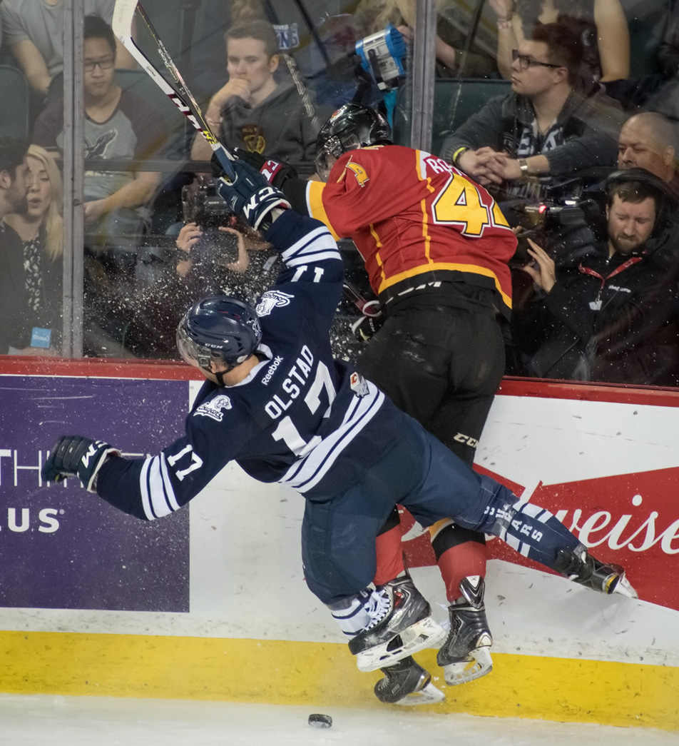 Panefull Hit: A cameraman takes cover as Cougars forward Tanner Olstad, left, collides with Dylan Walchuk, sending him up into the glass. (Photo by Tyler Marr/The Press)
