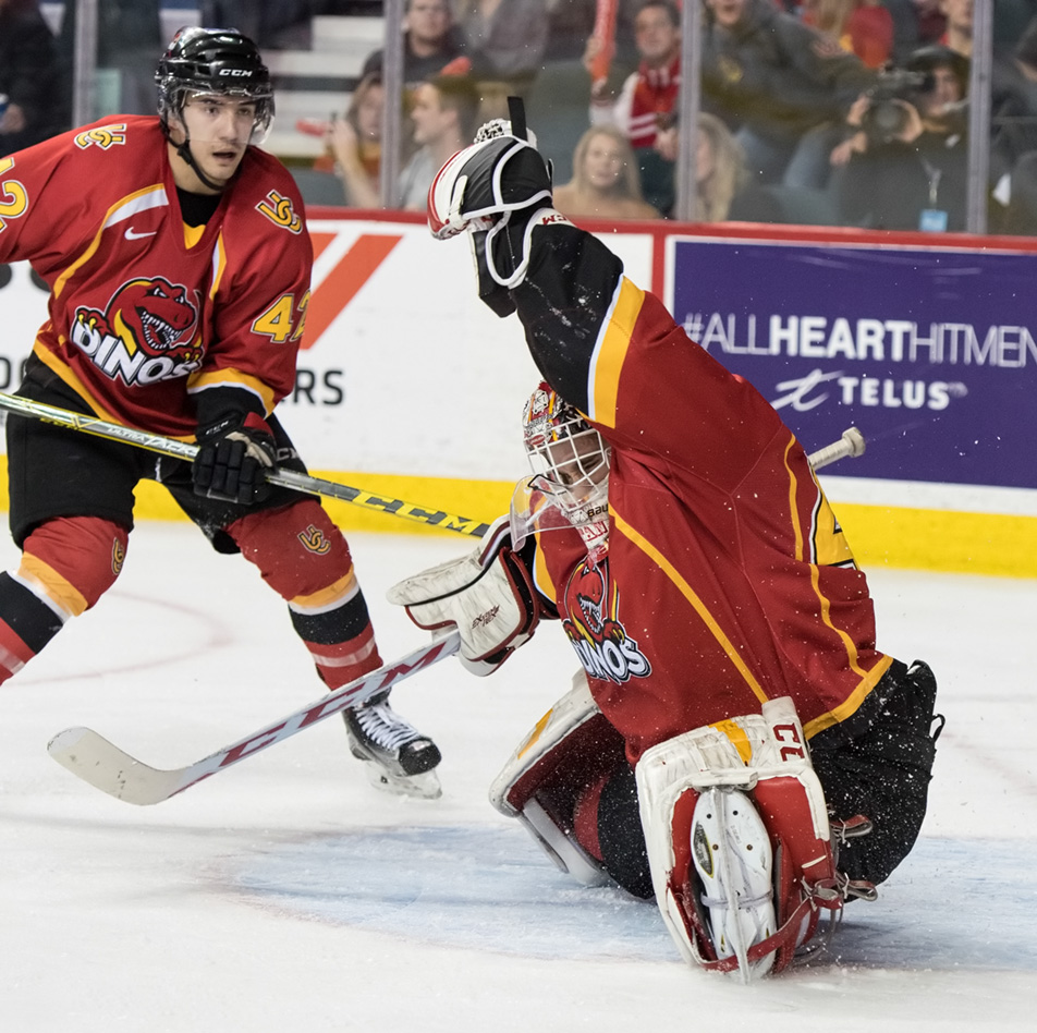 Snapped Shot : Dinos goalie Steven Stanford, right, makes a save. (Photo by Tyler Marr/The Press)