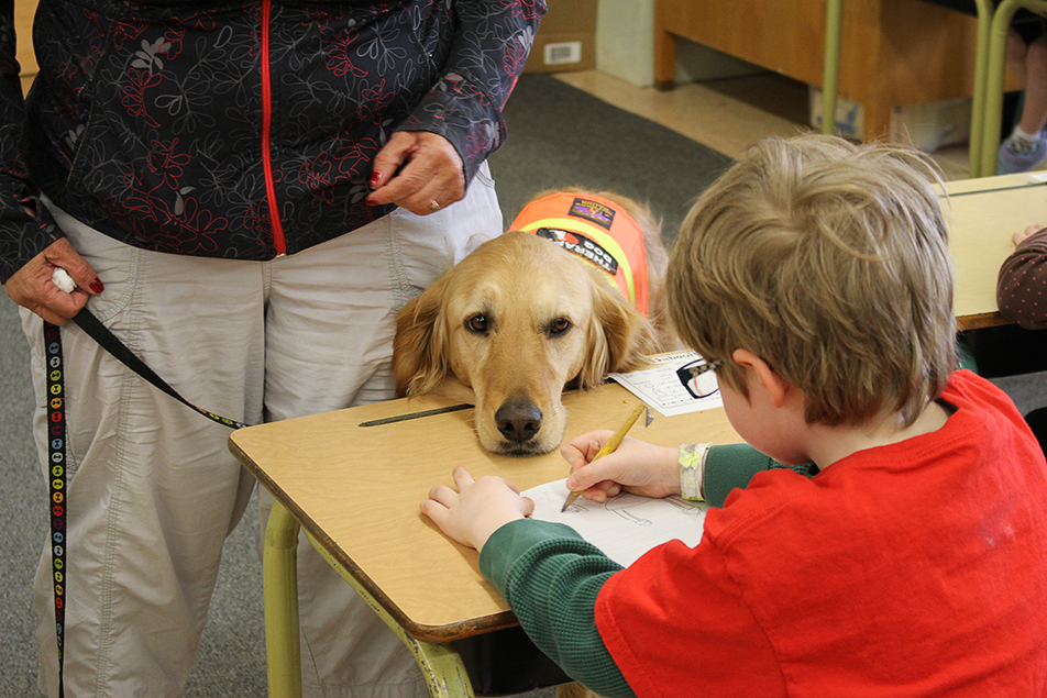 Here for You:Callie the therapy dog visits the Grade 1 French Immersion students at Varsity Acres School. The students draw a picture of Callie and then write their favourite thing that Callie does in French. (Photo by Shane Weaver/SAIT Polytechnic)