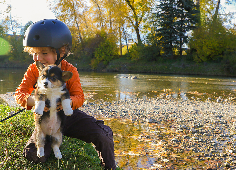 Puppy Love: Ethan Morgan, 4, plays with his new dog, Stormy, at Stanley Park in Calgary. Stanley Park is a favourite place for a variety of activities such as picnicking, swimming, canoeing, tennis, walking and biking. (Photo by Dawn Gibson/ The Press)