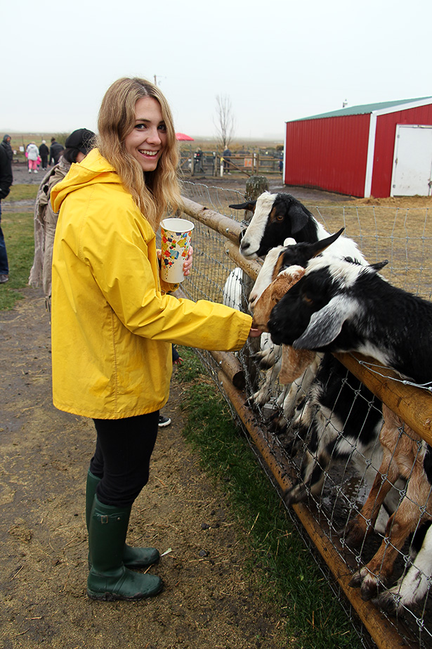 Feeding the kids: Elle McLean feeds the goats at the Calgary Corn Maze and Fun Farm in Calgary on Saturday, Oct. 1, 2016. McLean visited the maze on the first day of their annual month-long Autumn Pumpkin Festival. (Photo by Laurel McLean/The Press)