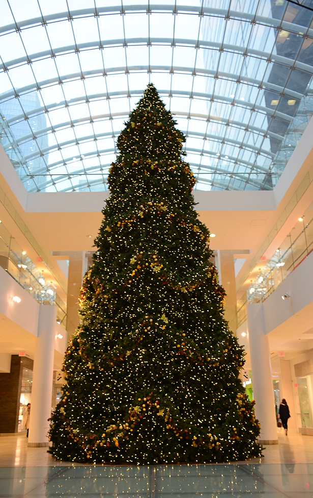 Christmas Craze: A massive Christmas tree display at The Core shopping centre in downtown Calgary on Tuesday, Nov. 15, 2016. The tree is one of many seasonal decorations that are set up in early November, despite Christmas falling nearly two months later. (Photo by Zenna Wilberg /The Press)