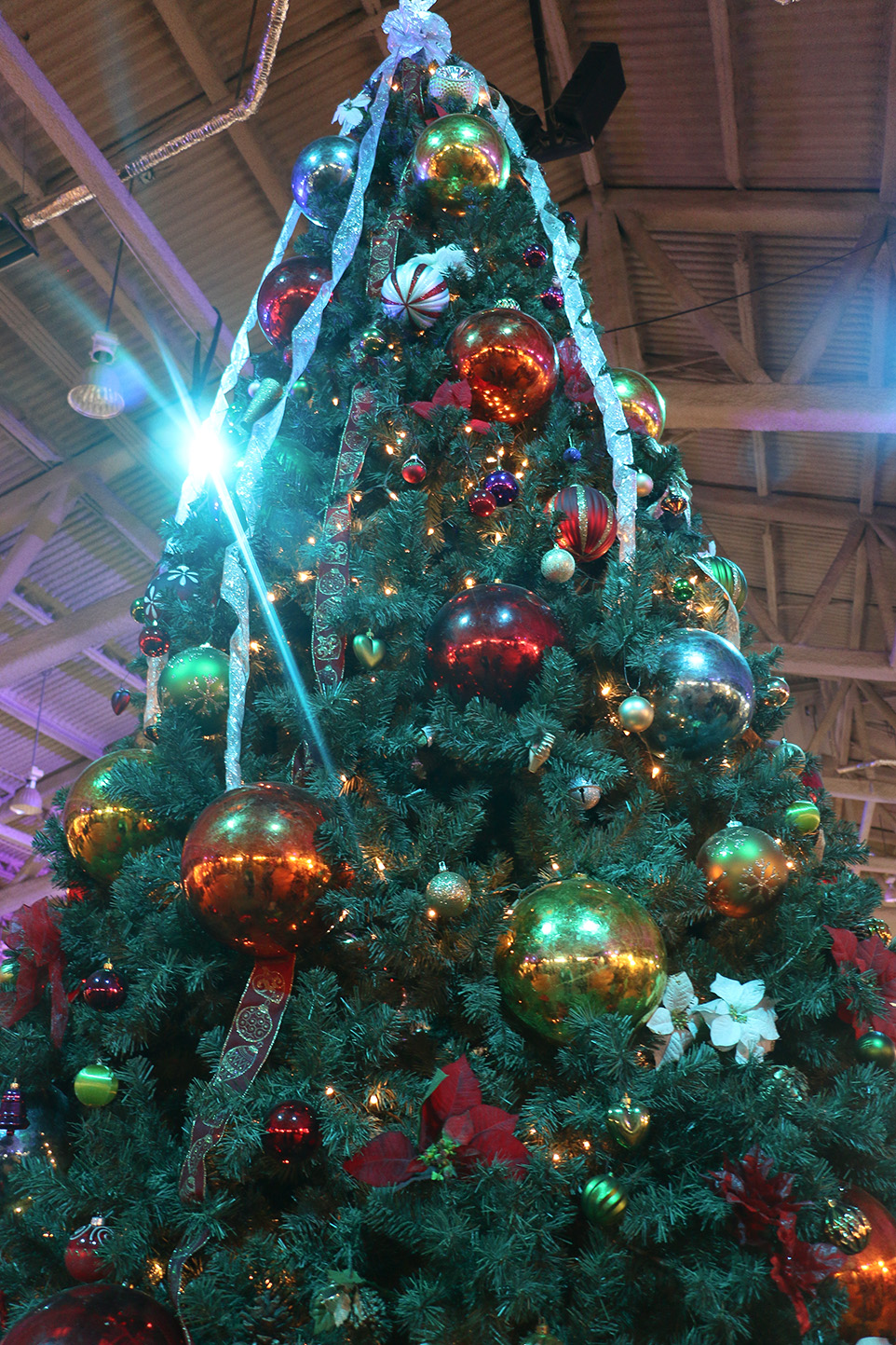 Christmas Cheer: Spruce Meadows Christmas Market in Calgary Alberta on November 18th 2016. (Photo by {Maddie Burton }/The Press)